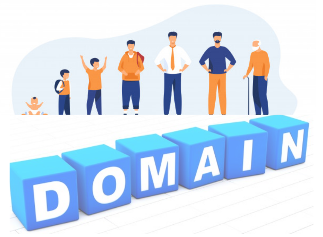 How to Buy the Right Aged Domain and Getting it Indexed Fast